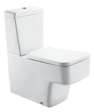 Washdown toilet with floor screw+Cistern with dual flush LY1002+LY1003