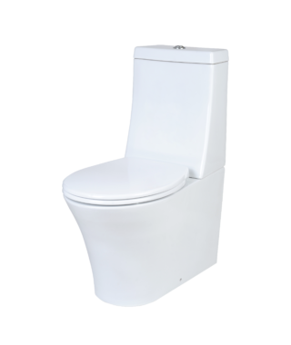Washdown toilet with floor screw+Cistern for toiletPA1002+PA1003