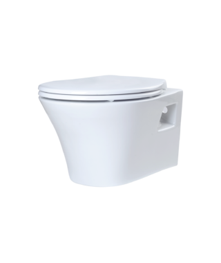 Wall-hung rimless toilet with fixing screw PA1100