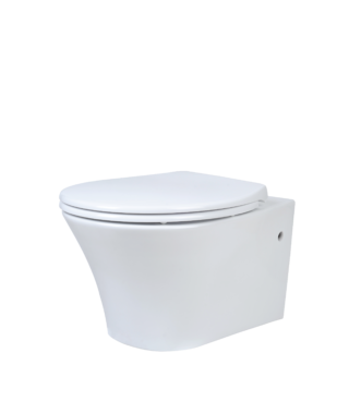 Wall-hung rimless toilet with fixing screw PA1100R