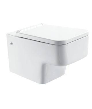 Wall-hung toilet with fixing screwLY1100