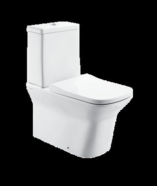 Washdown toilet NA1000